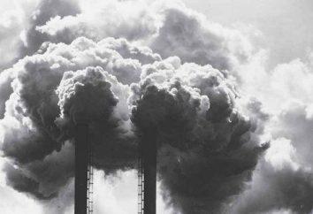 Problemy ekologiczne na Równinie Zachodniej Syberii. Problemy natury i człowieka w zachodniej Syberii