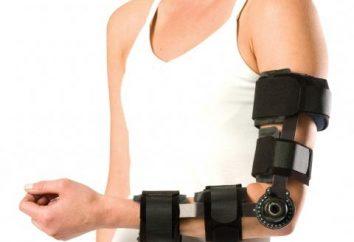 Sperren Sie den Arm und Unterarm. Schulter tabs