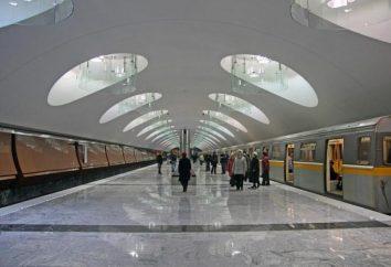 Który otworzył nową stację metra w Moskwie. Jazda nowe stacje moskiewskiego metra