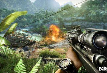 Requisiti di sistema Far Cry 3: minimi e consigliati. Che cosa succede se Far Cry 3 non si avvia