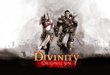 Passaggio di Divinity Original Sin: consigli per principianti