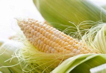 Co ciekawe pytanie brzmi: Ile kalorii kukurydza?