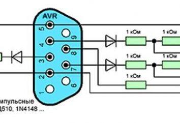 Programmatore Gromov: denominazione, descrizione