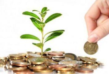 Investir para iniciantes. estratégias de investimento