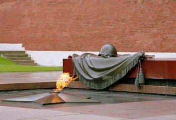Grób Nieznanego Żołnierza. Grób Nieznanego Żołnierza – zdjęcie
