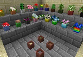 "Come pot ""Maynkraft"" per i fiori?"