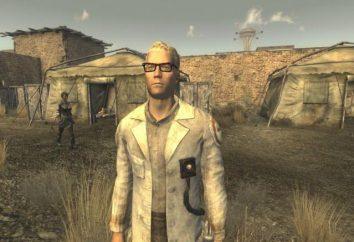 Fallout New Vegas: i partner e la loro descrizione