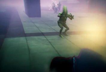 Misión agitador – las misiones en un área con césped y un alijo en el GTA 5