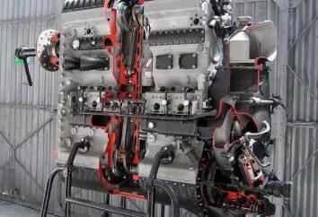 Zweitakt-Dieselmotoren: Das Prinzip der Operation, die Einrichtung, die Vor- und Nachteile