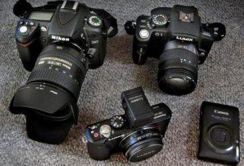 Buona macchina fotografica digitale poco costoso: valutazioni, recensioni, le specifiche e le recensioni dei proprietari. fotocamera reflex a prezzi accessibili e buona – come scegliere