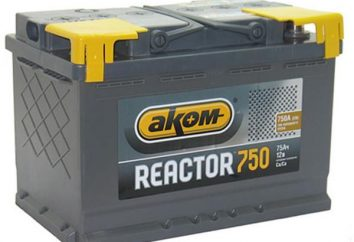 Batterie « réacteur »: commentaires, spécifications. Bon pour batterie de voiture