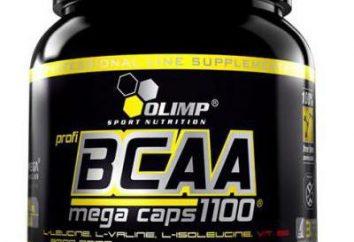 Co lepiej BCAA: aminokwasy proszek kwasu, tabletki, kapsułki