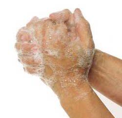 Regras de higiene