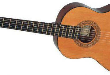 guitares acoustiques Hohner: commentaires