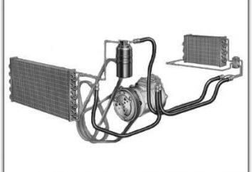 Co zrobić, jeśli klimatyzator nie działa samochód?