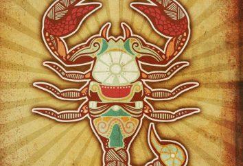 Die Natur des Skorpions. Scorpio weiblicher Charakter