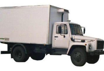 GAZ-3309: charakterystyka techniczna, recenzje, ceny, zdjęcia