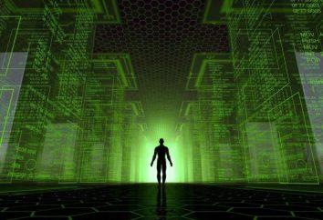 Wenn die DNA – diese Software, die den Code geschrieben hat?