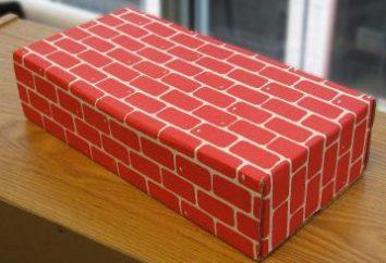 Comment calculer le nombre de briques dans la maison? Essayons ensemble