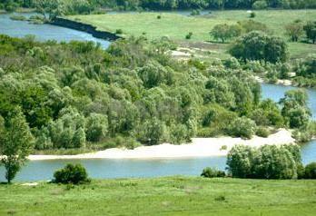 Woroneż-Lipieck. południowych regionach podróży