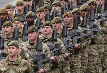 Interpretazione dei sogni: esercito, progetto esercito, arruolato nell'esercito. oneiromancy