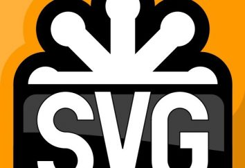Sie öffnen die SVG-Dateien: Hauptaspekte