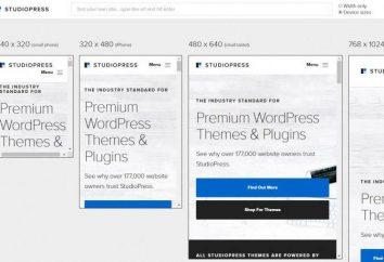 Jak sprawdzić wersję witryny mobilnej? Sposoby testowania witryn mobilnych