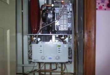 Chaudière à gaz avec une enceinte étanche: un manuel de l'appareil