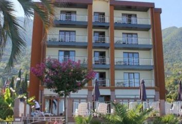 Alex Beach Hotel 4 * (Gagry, Abjasia): fotos, opiniones y descripciones, descripción del hotel, precios