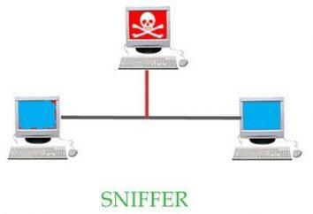 senhas farejadores, rede. Sniffer – o que é?