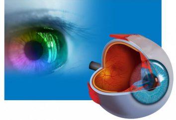 """SI """"Institut für Augenkrankheiten"""" (Ufa): Sehkorrektur, Diagnose und Behandlung von Augenkrankheiten"""