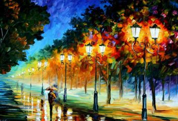 Afremov artysty: malarstwo. Wykonawca Leonid Afremov