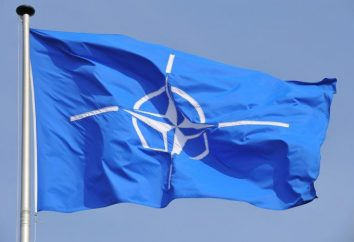 NATO. membri della NATO. armi della NATO