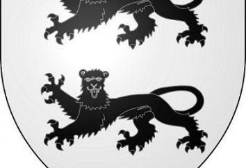 Forma herby. Tarczy herbowej. Komponenty Emblem