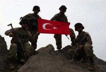 armée turque: la force, les armes, photo