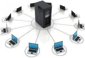 Virtual Hosting – das ist … Der Unterschied wird geteilt von einem dedizierten Server-Hosting?