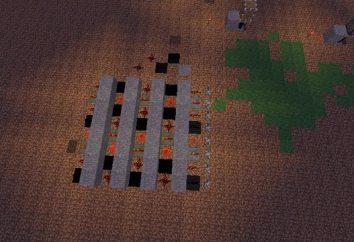 Verschiedene Mechanismen in Minecraft, deren Typen und Anwendung