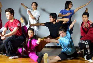 Wushu – co to jest? Jakie są style wushu? Gimnastyka wushu, czy dziecko była pomocna?