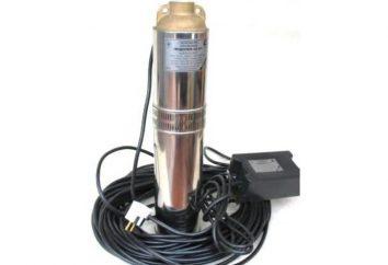 "Bohrloches ""Aquarius"" Pumpen: Qualität und angemessener Preis"