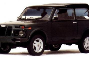 """VAZ-21218 """"Handicap"""": las especificaciones, las revisiones de los propietarios, una prueba de conducción"""