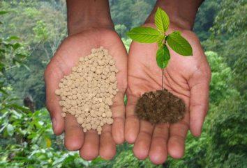 fertilizzanti Potash – che cos'è? nome della specie, l'uso