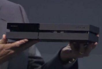 Che è meglio: PS4 o Xbox One? Cosa scegliere, quali caratteristiche migliori – PS4 o Xbox One?