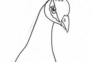 """Hack """"ptaszka"""" własnymi rękami, papieru, naturalnego materiału, nici, gliny"""