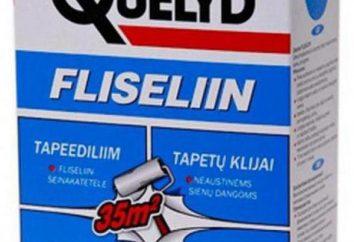 Argilla Quelyd: tipologie, caratteristiche e recensioni. Colla per tessuto non tessuto, vinile, carta da parati di carta, così come fibra di vetro