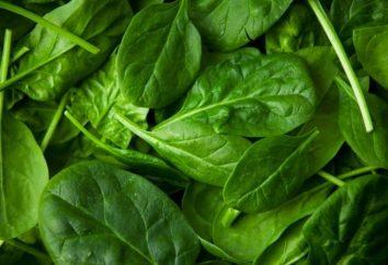 El potasio en los alimentos que forman la base de la alimentación saludable
