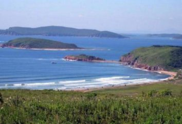 Ce qui est remarquable Big Oussouri Island?