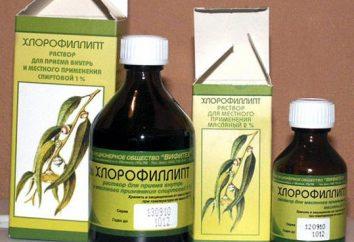 """Lek """"Chlorophyllipt"""" nos. roztworze olejowym """"Chlorophyllipt"""" nose: wskazania i przeciwwskazania"""