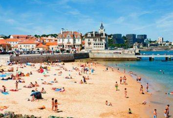 plaż lizbona, piasek, temperatury wody i fala