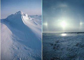 Tundra klimat w Rosji i Ameryce Północnej