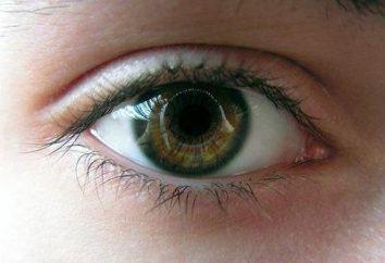 Zastoinowa tarczy nerwu wzrokowego: przyczyny, objawy i leczenie funkcje